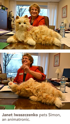 Janet Iwaszczenko pets an animatronic cat