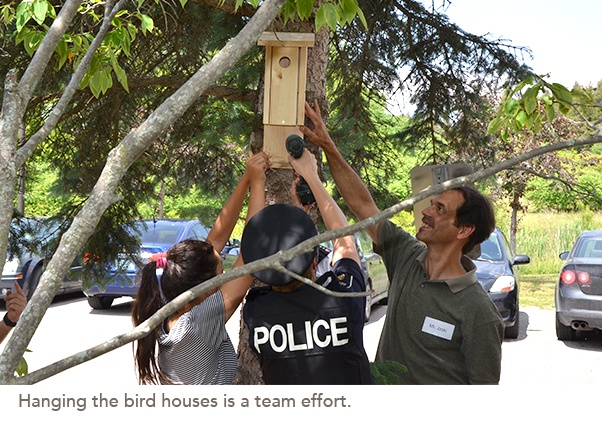 Hanging the bird houses is a team effort.